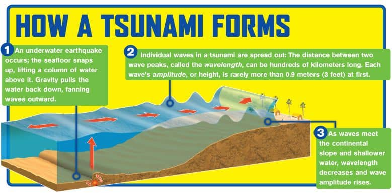 Ultimate Tsunami Movies List